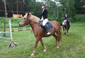 Лошадь – и друг, и лекарь