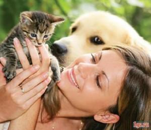 Содержать домашних животных следует по правилам
