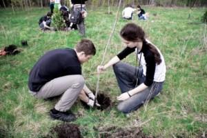 В «Неделе леса-2015» будет участвовать молодежь