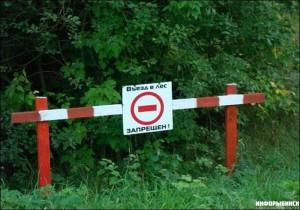 Об ограничении посещения лесов
