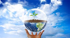 Сегодня отмечается День охраны окружающей среды