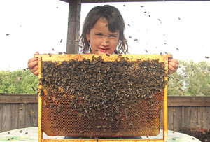 ...Это «правильные» пчелы, дают «правильный» мед Лиза Апенченко, г. Верхнедвинск.