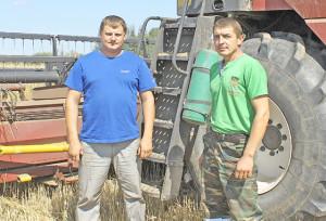 Уборка зерновых набирает темпы