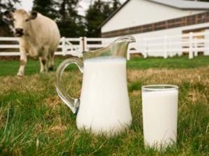 В Верхнедвинском районе аграрии обсудили вопросы животноводства