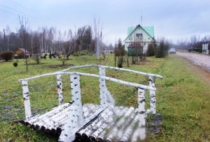 Благоустроенная территория Стрелковского лесничества.