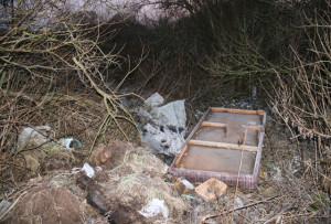 Нерадивые хозяева мусор прячут в кустах.
