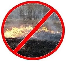Не допускайте выжигания сухой травы