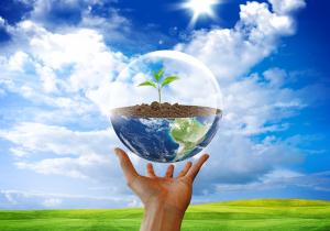 5 июня — День охраны окружающей среды