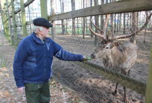 Как живётся зверям в «Лесной сказке»?