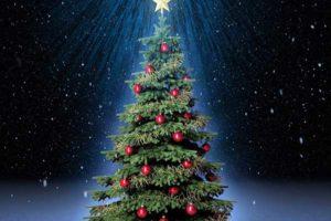 В Верхнедвинске 23 декабря откроется городская ёлка