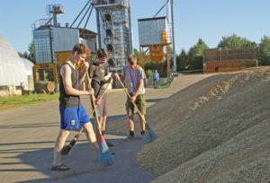 Верхнедвинские школьники помогают на уборке урожая