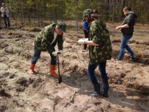Верхнедвинцы примут участие в Неделе леса-2018