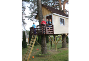 Верхнедвинский житель построил дом на дереве