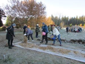Верхнедвинцы приняли участие в акции «Чистый лес»