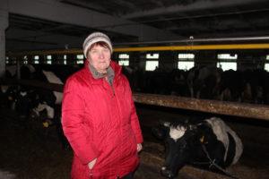 Стабильную работу обеспечивает зав. фермой Ф. К. Манько.