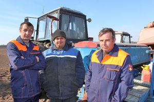 У Верхнядзвінскім раёне першымі адсеяліся хлебаробы ААТ «Шайцерава»
